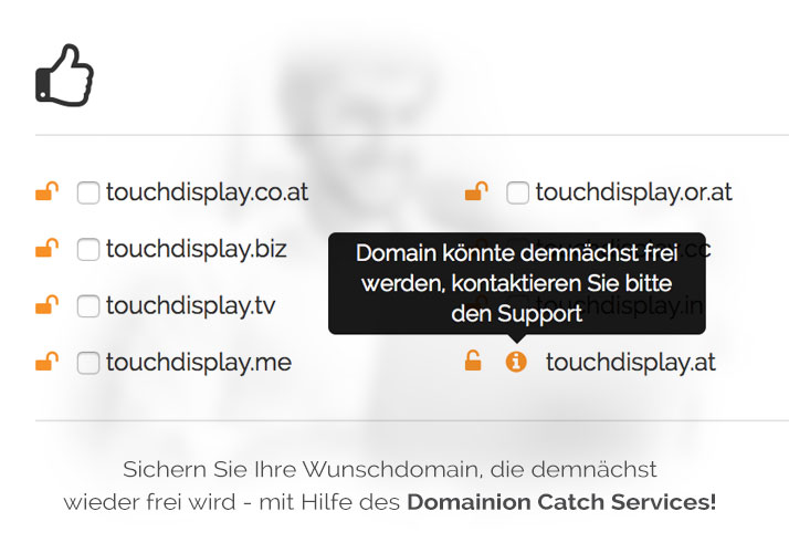 Domain Catch von Expired Domains
